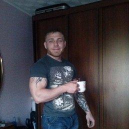Кренк, 29 лет, Комсомольск-31