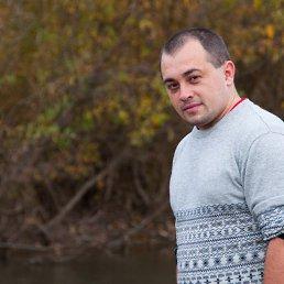 Димка, 29 лет, Кочубеевское
