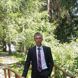 Дмитрий, 29 лет, Карасук