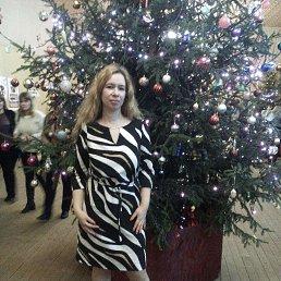 Елена, 35 лет, Талдом