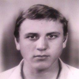 сергей, 39 лет, Михайловка