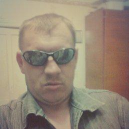 Владимир, 42 года, Мироновский