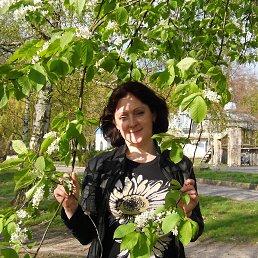 Таня, 41 год, Владимирец
