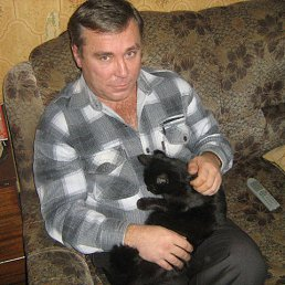 Андрей, 51 год, Ступино