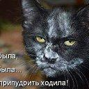 Фото Наталья, Подольск, 49 лет - добавлено 19 мая 2016