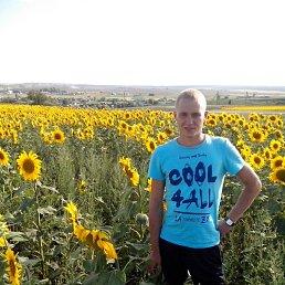 Дмитрий, 28 лет, Челно-Вершины