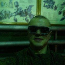 Алексей, 28 лет, Грайворон