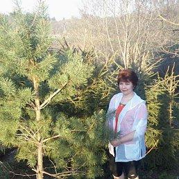 Ольга, 61 год, Сафоново