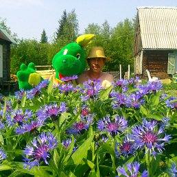 Фото Константин, Красноярск, 53 года - добавлено 24 июля 2016