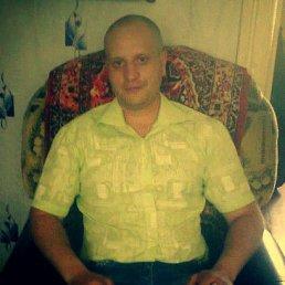 Анатолий, 34 года, Корюковка