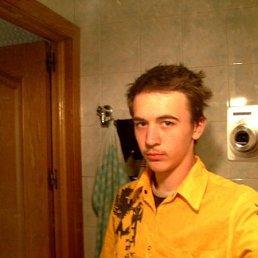Григорий, 29 лет, Москва