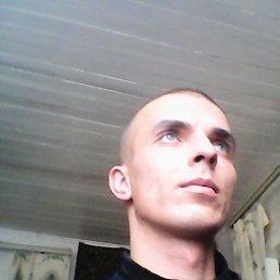 Алексей, 33 года, Токаревка