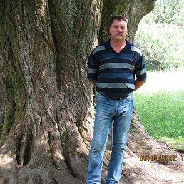 Толя, 55 лет, Комсомольское
