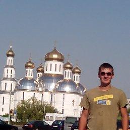 Віталік, 26 лет, Ковель