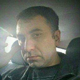 Георгий, 41 год, Сочи