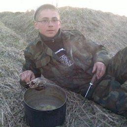Сергей, 27 лет, Алатырь