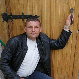 Владимир, 44 года, Дзержинск