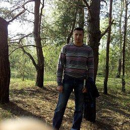 Олег, 29 лет, Коломыя