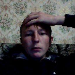 Дмитрий, 27 лет, Коноша