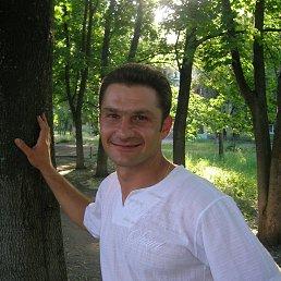 Николай, 36 лет, Покровское