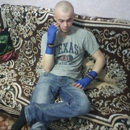 Игорь, 26 лет, Ольховатка