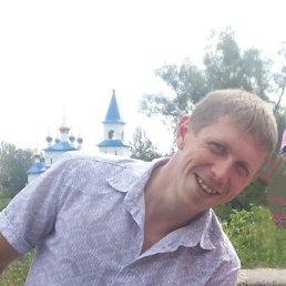Александр, 30 лет, Аша