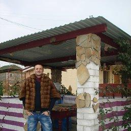 Максим, 27 лет, Килия
