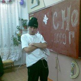 Сергей, 29 лет, Камышин