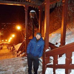 Vadim, 37 лет, Красногорский
