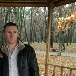 Евгений, 29 лет, Калита