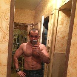 WeST, 28 лет, Ярославль