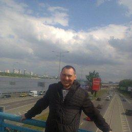 Виталик, 29 лет, Боровая