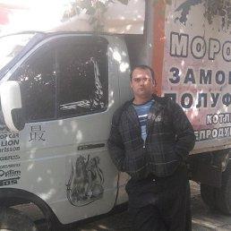 ден, 29 лет, Донской