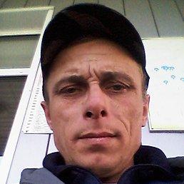 Николай, 46 лет, Междуреченск