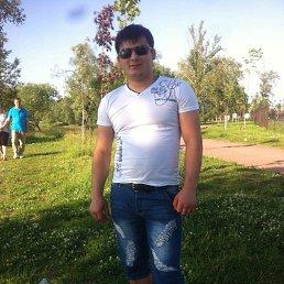 Феруз, 28 лет, Колпино