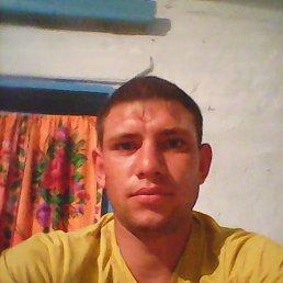 Алексей, 27 лет, Алтайское