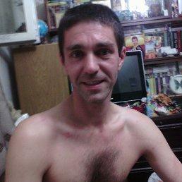 Дима, 42 года, Запорожье
