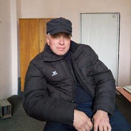 Николай, 42 года, Овруч