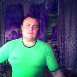 иван, 28 лет, Новый Оскол