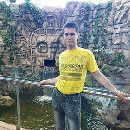 Виталик, 29 лет, Орша
