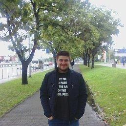 Олег, 27 лет, Коломыя