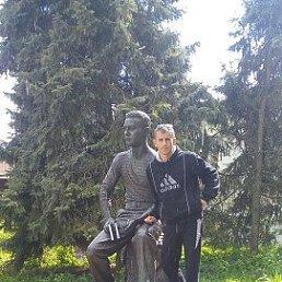 Владимир, 40 лет, Вичуга Старая