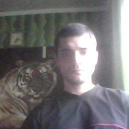 Ярослав, 34 года, Глобино
