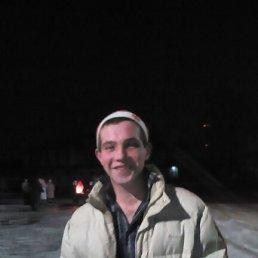 Николай, 27 лет, Володарск