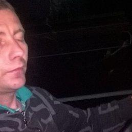 Миша, 35 лет, Иршава