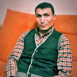 Баха, 29 лет, Одинцово