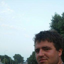 Ярослав, 29 лет, Требухов
