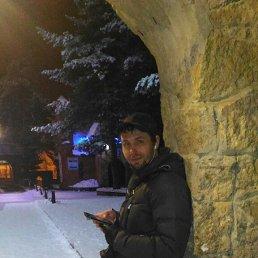 Николай, 38 лет, Сосновый Бор