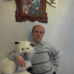 Виталий, 46 лет, Нетешин