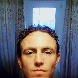 Павел, 29 лет, Гатчина